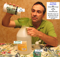 Bill Lauto, Going Green, Going True Green, weed killer, organic weed killer, home made weed killer, natural weed killer, environmentalist